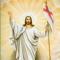 App Icon for Vertrouwen Bijbel verzen App in Belgium IOS App Store