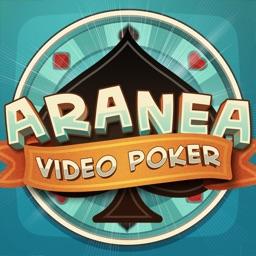 Aranea - Video Poker