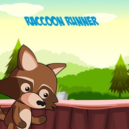 Raccoon Runner