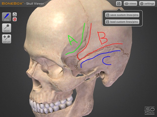 BoneBox™ - Skull Viewer on the App Store