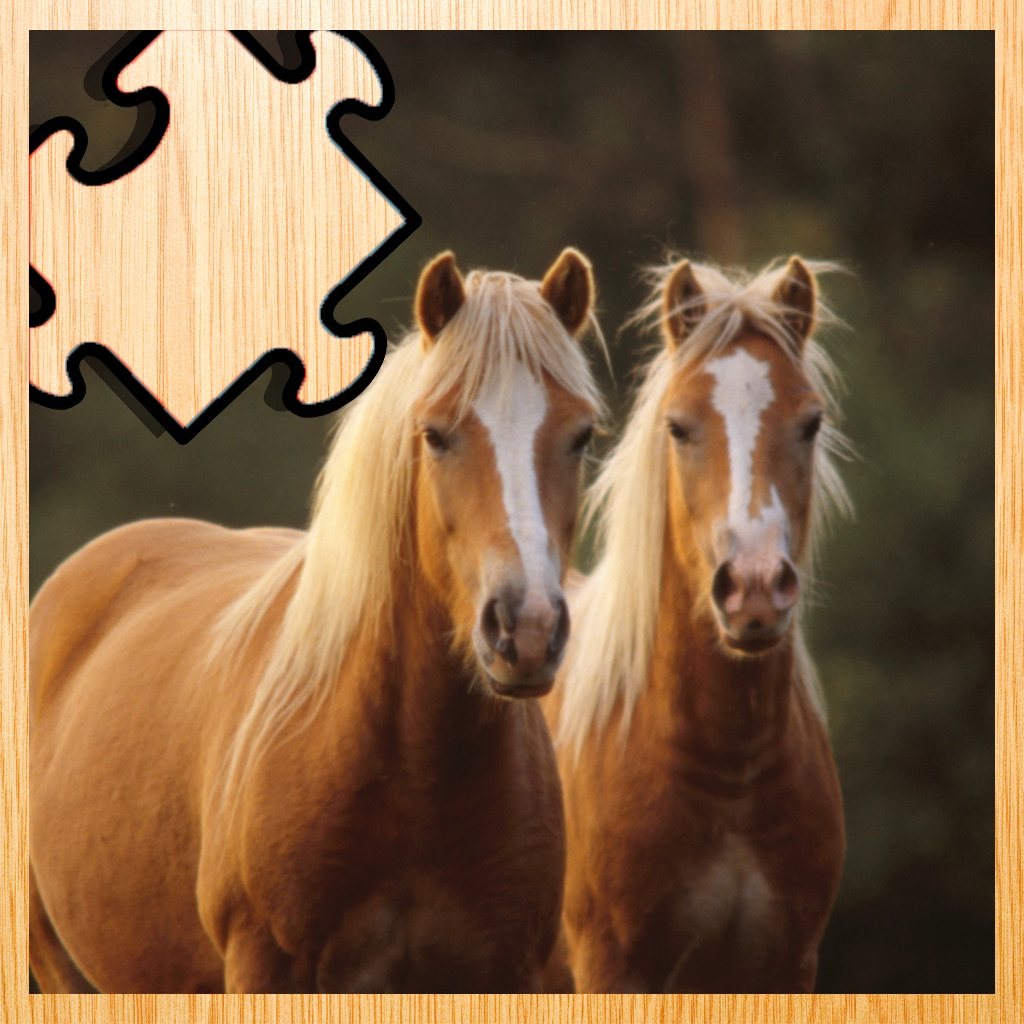 Animated Haflinger Horse-s Wood Puzzle With Beautiful Ponies - Gratis Educational Kids Game Fun For the Whole Family. Girls and Boys Learn hack