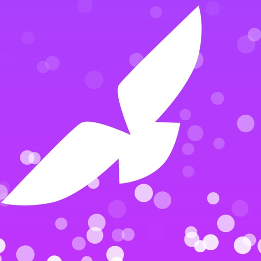 VPN-Bird SkyVPN iOS App