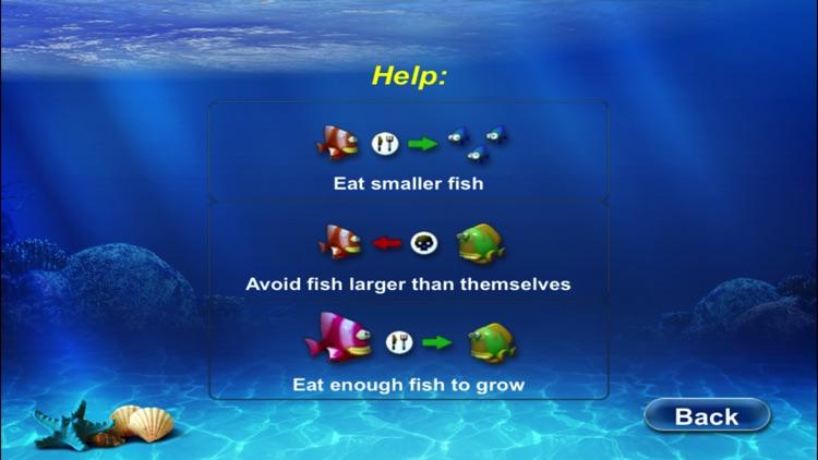Hungry Fish 2017