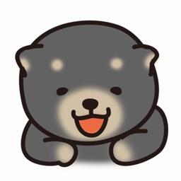 Shiba Inu Puppy Dog Black