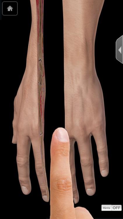 Hand & Wrist Pro III