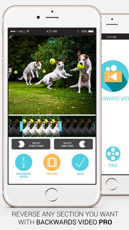 Backward Video Playback + screenshot-3