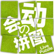 拼图游戏—经典手机拼图软件
