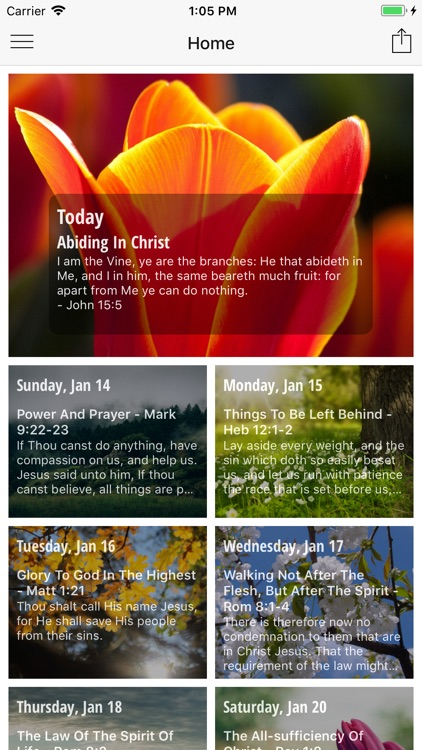Our Daily Walk With Jesus-Lite