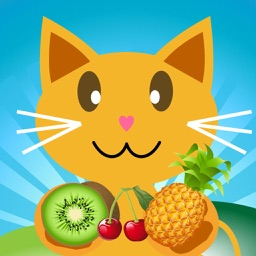 QCat - Fruit 7 in 1 Games