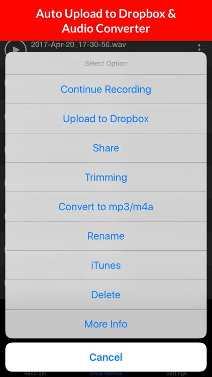 Voice Recorder & Audio Memos screenshot-3