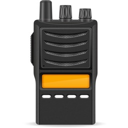 Online Video Walkie Talkie