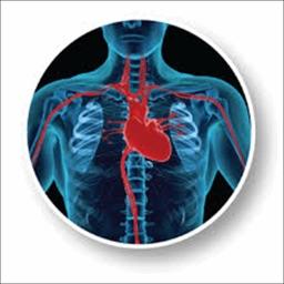 Heart Surgery Guide