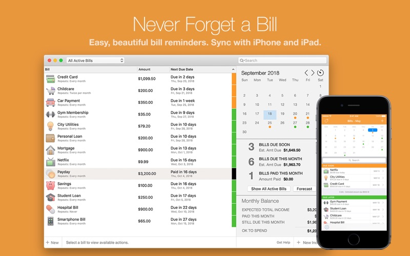 Bill Reminder Screenshot