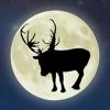 ReindeerCam - ReindeerCam 2018  artwork