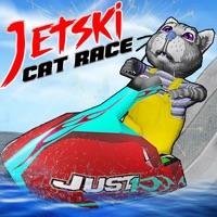 Codes for Jet Ski Cat Race Hack