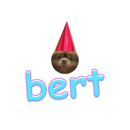 Bert Stickers