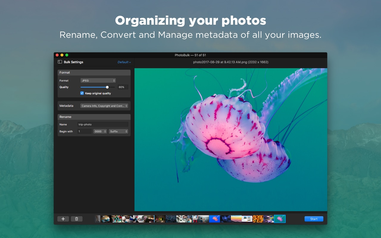 Screenshot do app PhotoBulk: watermark in batch