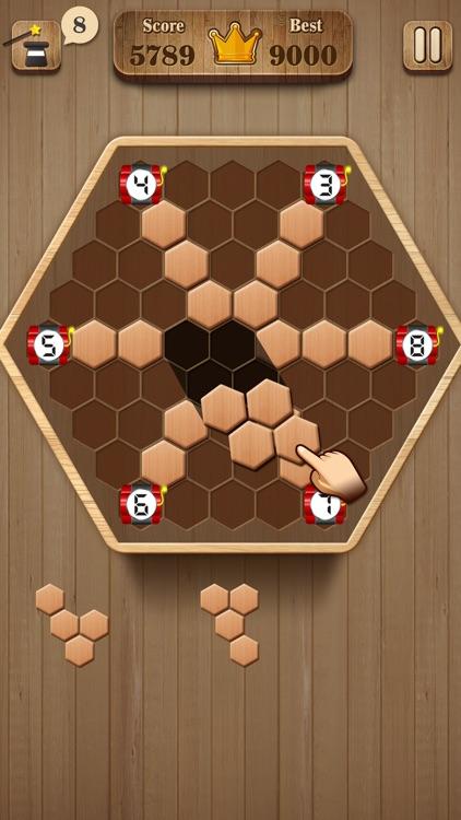 Wooden Hexagon Fit: Hexa Block screenshot-3