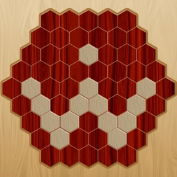 wood hexagon puzzle game