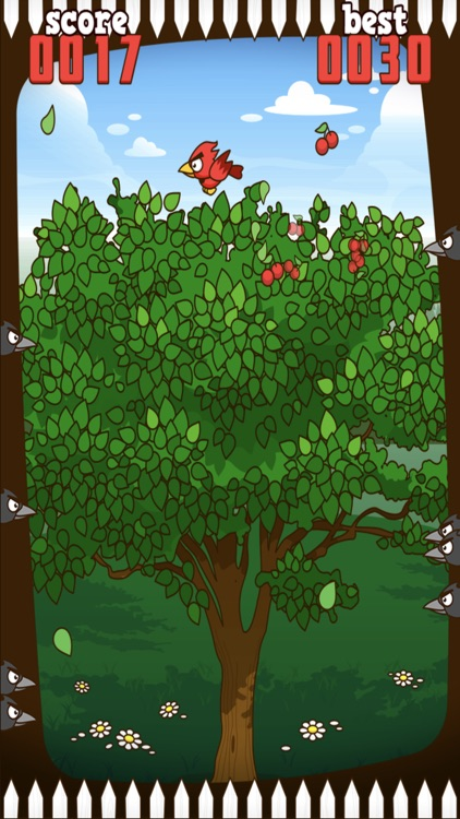 Red Bird - Cherry Challenge