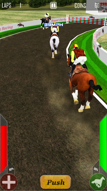 Royal Derby Horse Racing screenshot-4