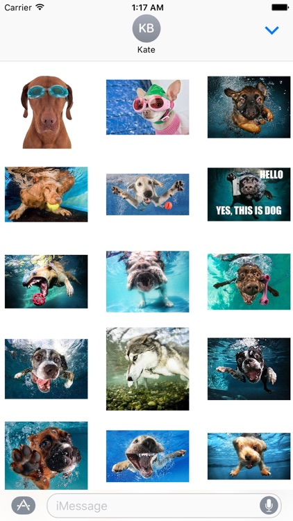 Dog Under Water Funny Sticker