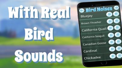 鳥の音のおすすめ画像2