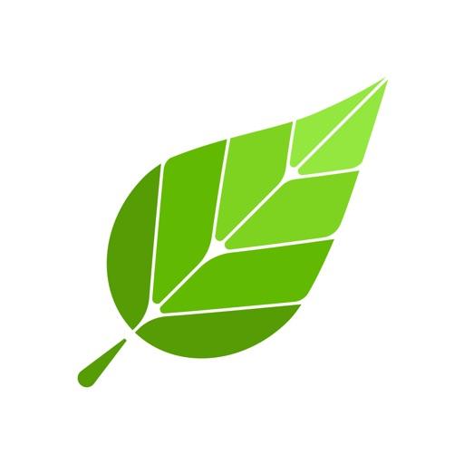 Green - 网际加速器