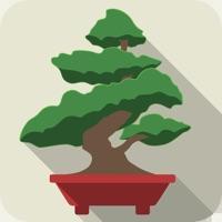 Codes for Pocket Bonsai Hack