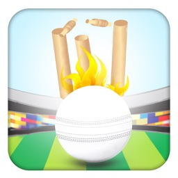 Pocket Cricket Fever