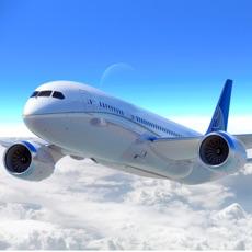 Activities of Airplane Pilot Flight Sim