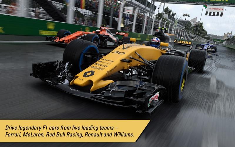 F1™ 2017 screenshot 2