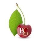 Braidwood Graham Tax Accounts icon