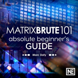 Beginner Guide MatrixBrute 101