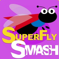 Codes for SuperFly Smash Hack
