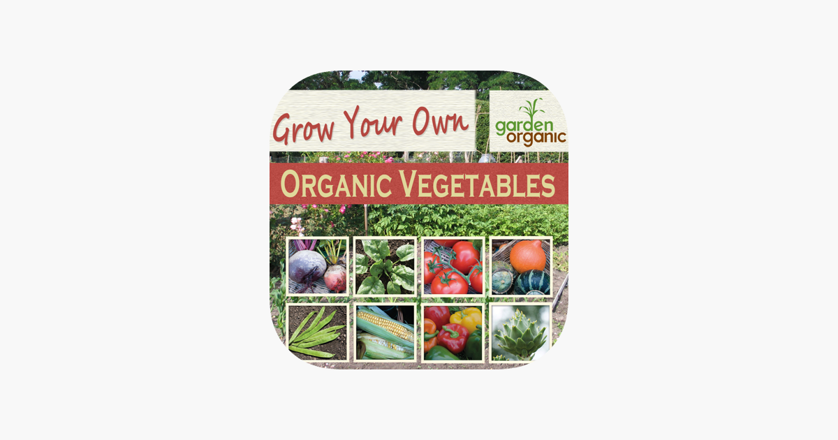 how to grow organic vege
