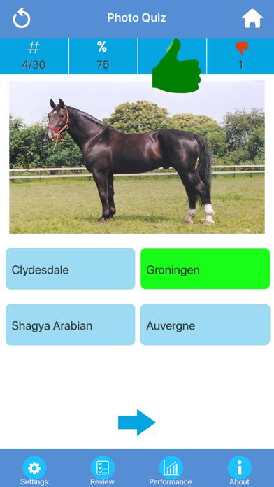 Horse Breeds Quizzes screenshot two