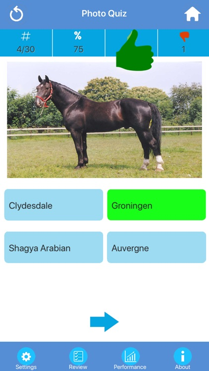 Horse Breeds Quizzes screenshot-1