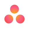 Asana: organize tasks & work