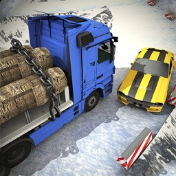 Snow Delivery Truck Drive 2018