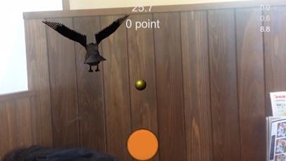 バードゾーンAR3Dゲーム Screenshot 2