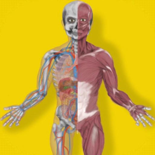 Inside The Human Body PREMIUM