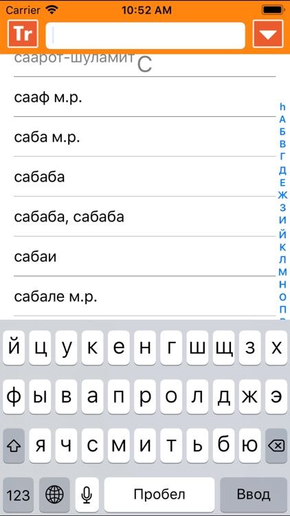 IRIS Hebrew Russian Dictionary screenshot-3