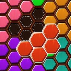 Activities of Wood Block Puzzle HEXA