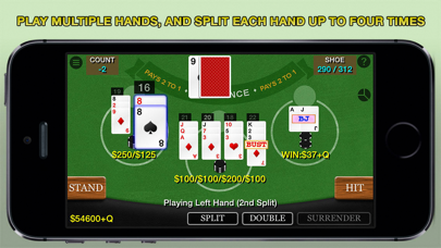 Blackjack 21 Pro Multi-Hand screenshot one