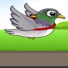 小鸟信使 - 不停的飞起 icon