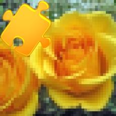 Activities of Amazing Photo Puzzles