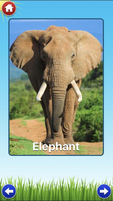 Zoo Sounds - Fun Educational Games for Kids screenshot one