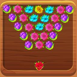 Flower Bloom Boom