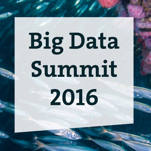 Big Data Summit 2016 icon